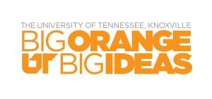 Big Orange Big Idea
