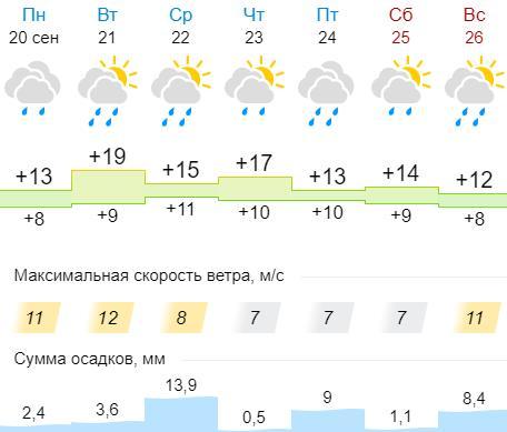 Марксовцев ожидает дождливая неделя
