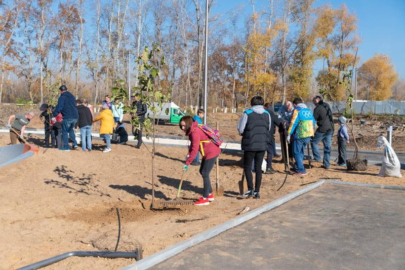 Ко Дню отца в Марксе высадили 55 деревьев на Хлебной пристани - новости маркс