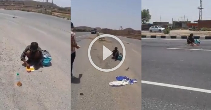 Heartbreaking video of hunger and helplessness, helpless young man eats a dead dog on the road