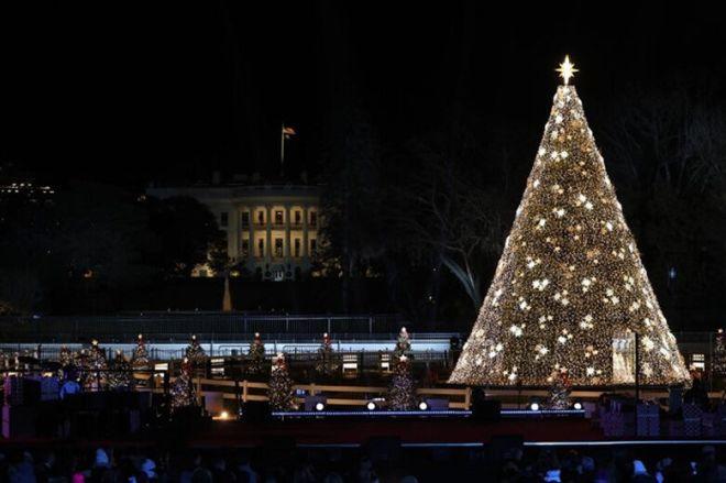 national xmas tree