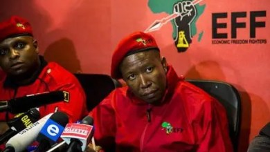 Photo of Julius Malema and  Ramaphosa's shade goes pear-shaped: But we want Beyonce