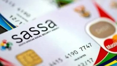 Photo of Sassa issue warning of increase in fake SMSes
