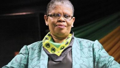 Photo of Zandile Gumede reportedly approved irregular lease of 48 cars