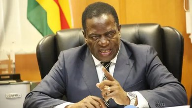Photo of Mnangagwa dismisses rumours of 'palace coup'