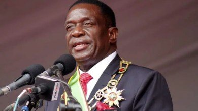 Photo of Mnangagwa's removal plan thickens