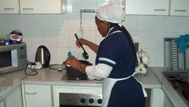 Housekeepers or cleaners