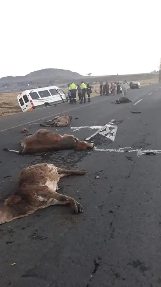 Iveco Accident