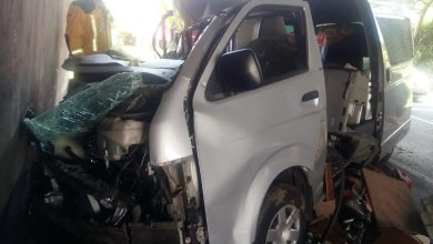 Photo of Kombi crashes into bridge pillar, one dead, pet dog injured