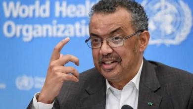 Photo of Coronavirus in SA: WHO boss praises South Africa's response to Covid-19 pandemic