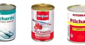 pilchards