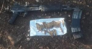 gun and live ammunition