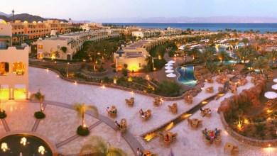 South Sinai Egypt