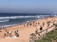 beachgoers run away from police
