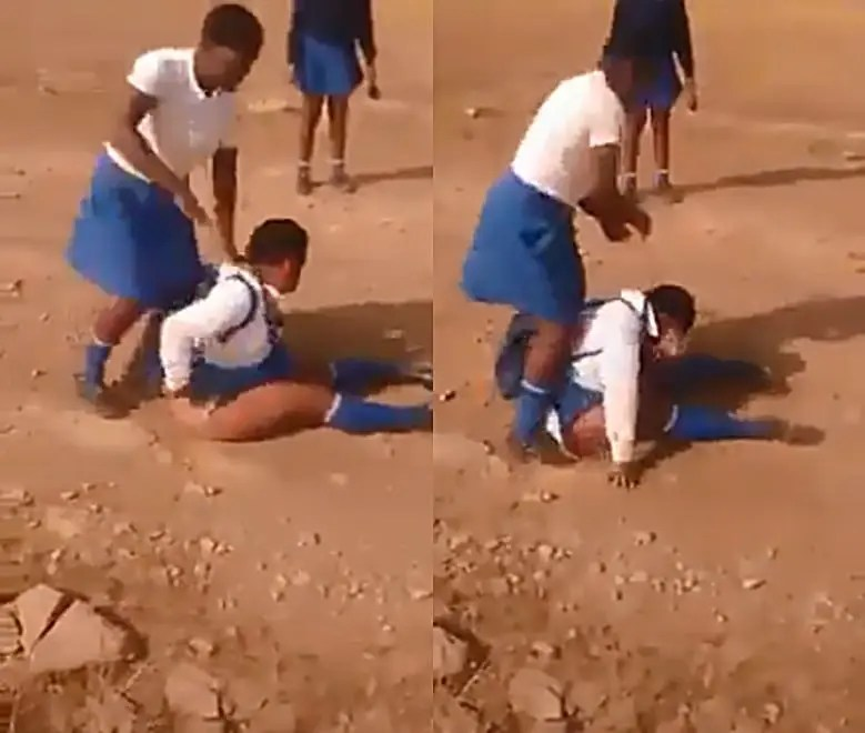 Bully school girl pulls and tears another girl's panty during fight