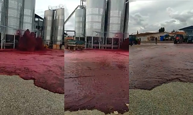 Disaster as 50 000 litres of Red Wine flood the streets