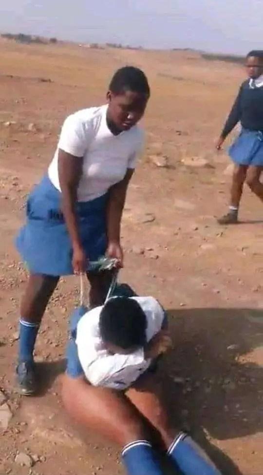 Mathole High School bully school girl