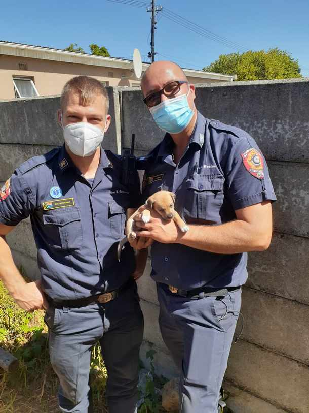Firefighters Morne Moolman and Steve Riddle with the rescued puppy