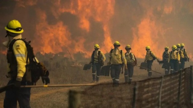 Cape Town firefighters
