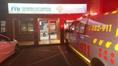 Netcare 911 Paramedics rush to save injured dog