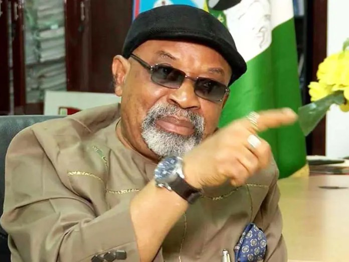 Labour Minister Ngige drags Nigerian doctors to court over strike action