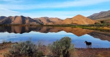 Barrydale Leiwater Dam: Picture: Doris Nadler