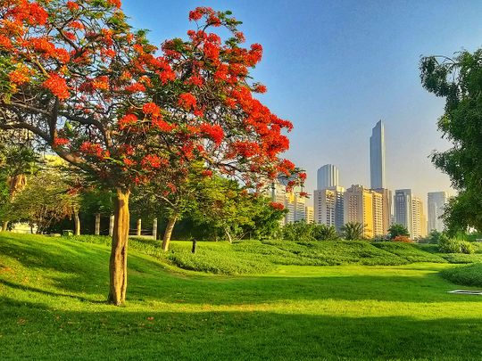 UAE weather: It's sunny and partly cloudy across the emirates