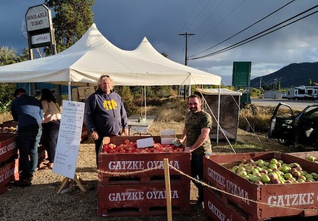 District of Lake Country supports Gatzke's apple tent – Kelowna News