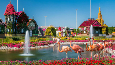What's new at Dubai Miracle Garden when it reopens on November 1?