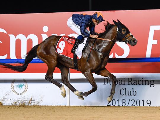 Meydan kicks off bumper weekend of horse racing across UAE