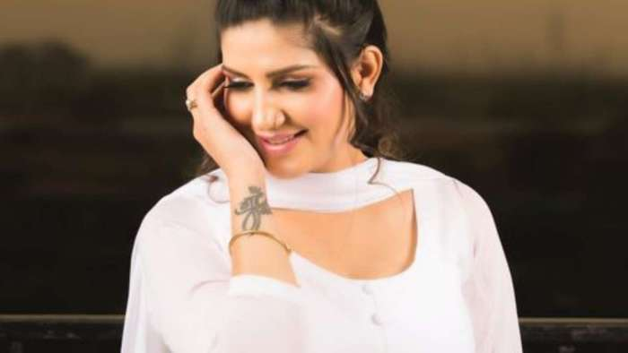 Sapna Chaudhary shares first picture with her baby boy