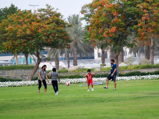 Massive redesigning planned for Dubai public parks to enhance city's ambience