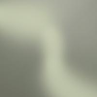 الاثنين 13 تشرين الاول 2014 – العدد 2963