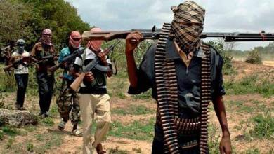 Photo of Don't put your daughters in schools again – Boko Haram tells Dapchi parents