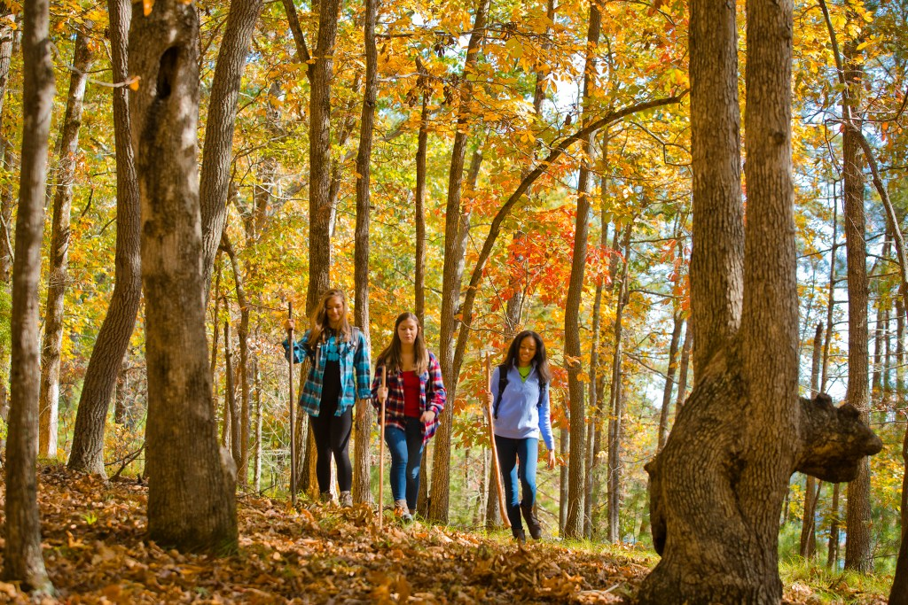 "Georgia State Parks' ""Leaf Watch"" Website Tracks Best Fall Color"