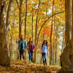 "Georgia State Parks' ""Leaf Watch"" Website Tracks Best Fall Color"