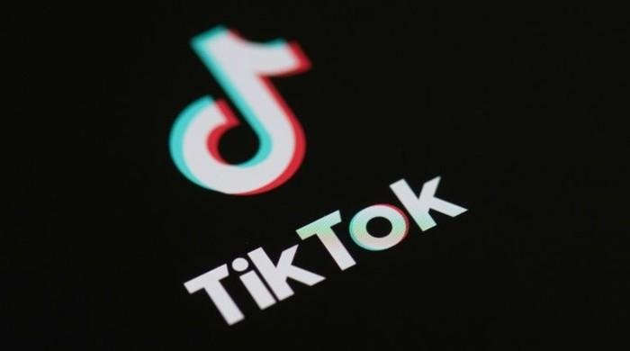 TikTok among several Chinese apps banned in India due to 'security concerns'