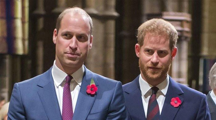 Prince Philip's funeral unlikely to heal Prince Harry, Prince William rift