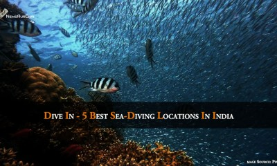 Dive In - 5 Best Sea-Diving Locations In India