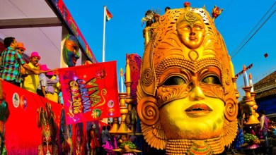 Photo of The Goa Carnival 2018 is Almost Here!