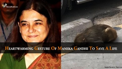 Photo of Heartwarming Gesture of Maneka Gandhi To Save A Life