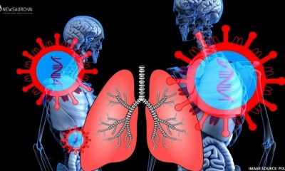 COVID-19: How It Affects Your Lungs?