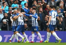 Epl: Seagulls Soar As Two Goal