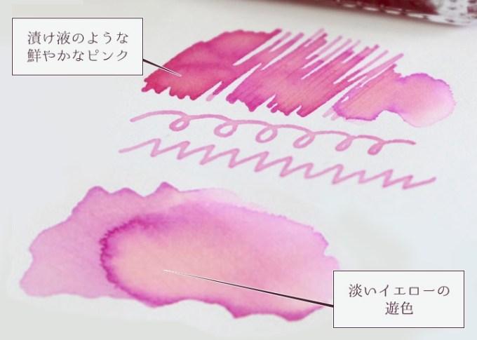 『岩下の新生姜万年筆インク』筆記イメージ
