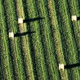 The Climate Corporation Acquires Agriculture Tech Startup HydroBio
