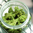 Cannabis Ecommerce Startup Closes $3.6 Million