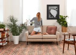 Consumer Startup Burrow Brings In $4.3 Million