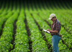 AgriTech Company Cool Planet Closes $20.3 Million in Funding