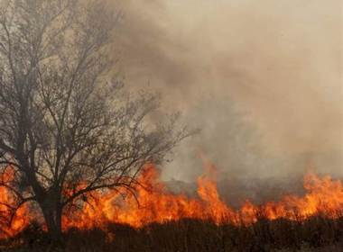 Bush Fires in Namibia Destroy Grazing Areas in Omusati (News Central TV)