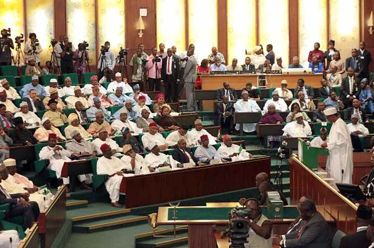 Nigeria's National Assembly: Why Adding Seats for Women Isn't Enough